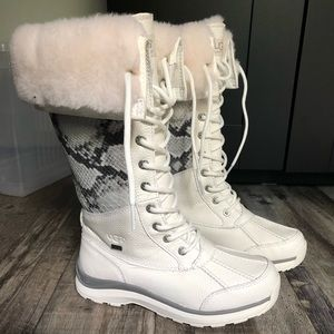 Ugg tall boots NEW